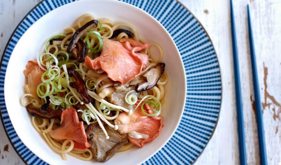 Oyster Mushroom & Noodle Stir Fry
