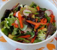 Spring Vegetable Salad with Asian Dressing